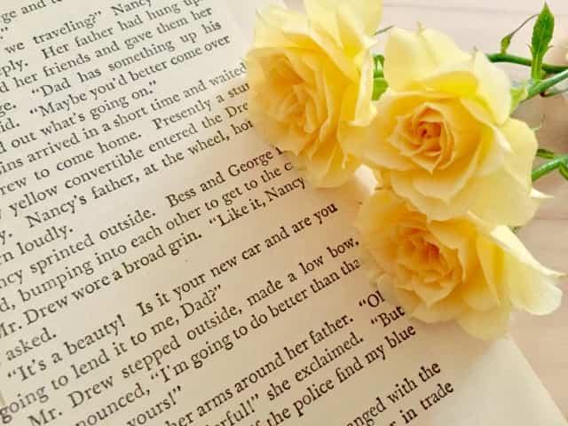 薔薇の花言葉で怖いのはどれ?贈る前にチェック!色や本数で変わる意味